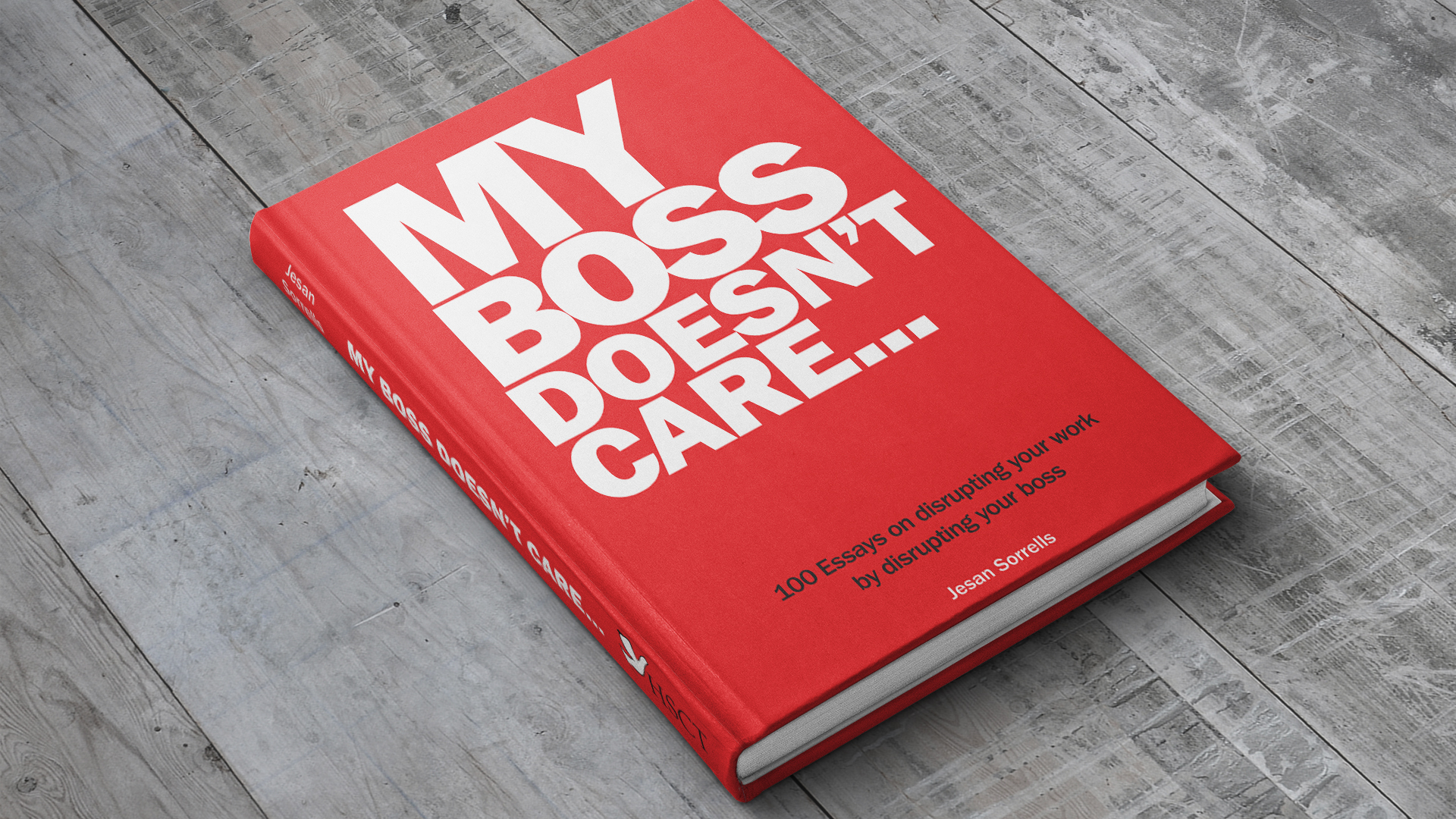 My Boss Doesn't Care - Book
